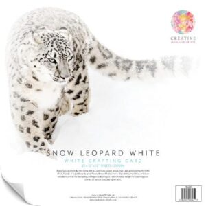 Snow Leopard 250gsm Card – 25 12″ x 12″ Sheets