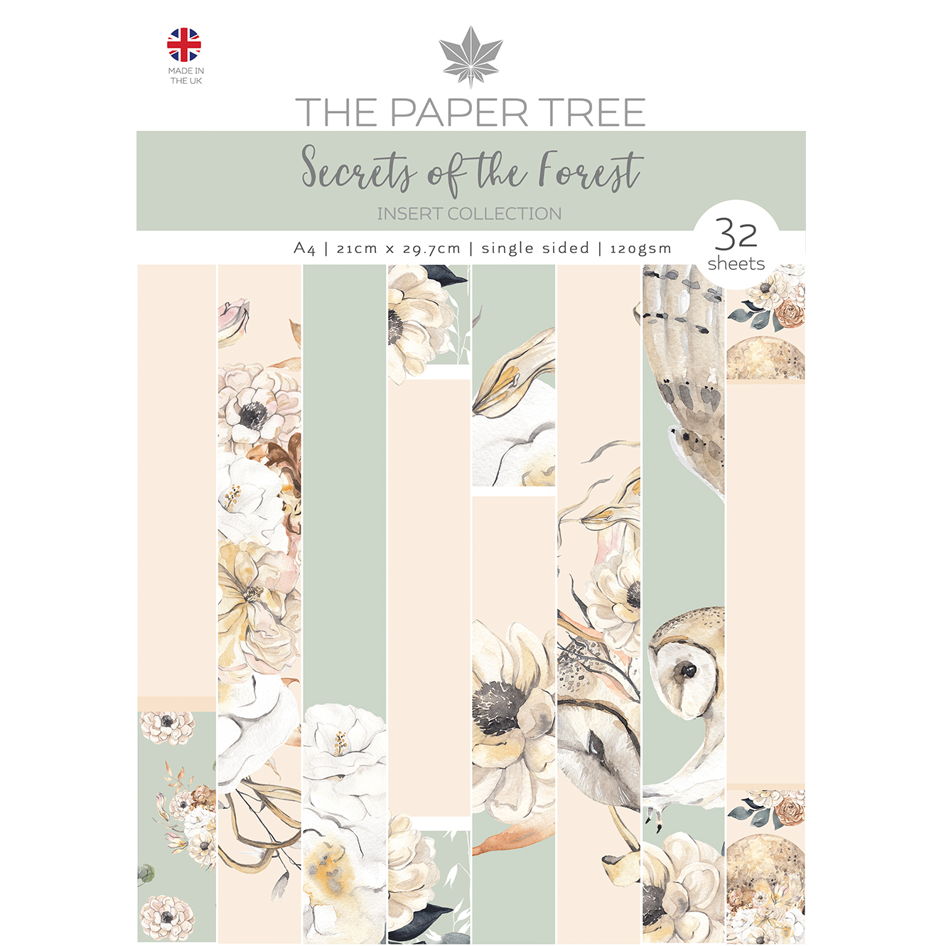 The Paper Tree Secrets of the Forest A4 Insert Collection