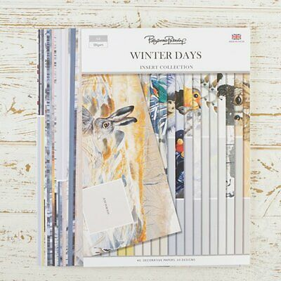 Pollyanna Pickering Winter Days Inserts Collection