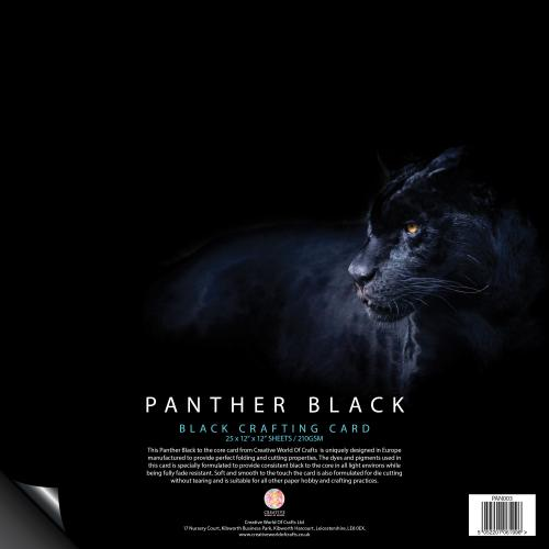 Panther Black 210gsm Card – 25 12″ x 12″ Sheets
